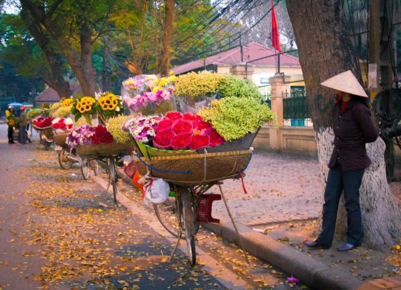 Autumn is the time which manyflowers inHanoi bloom