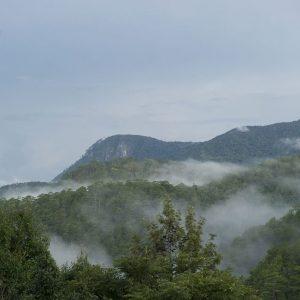 Explore the grandeur of Elephant Mountain