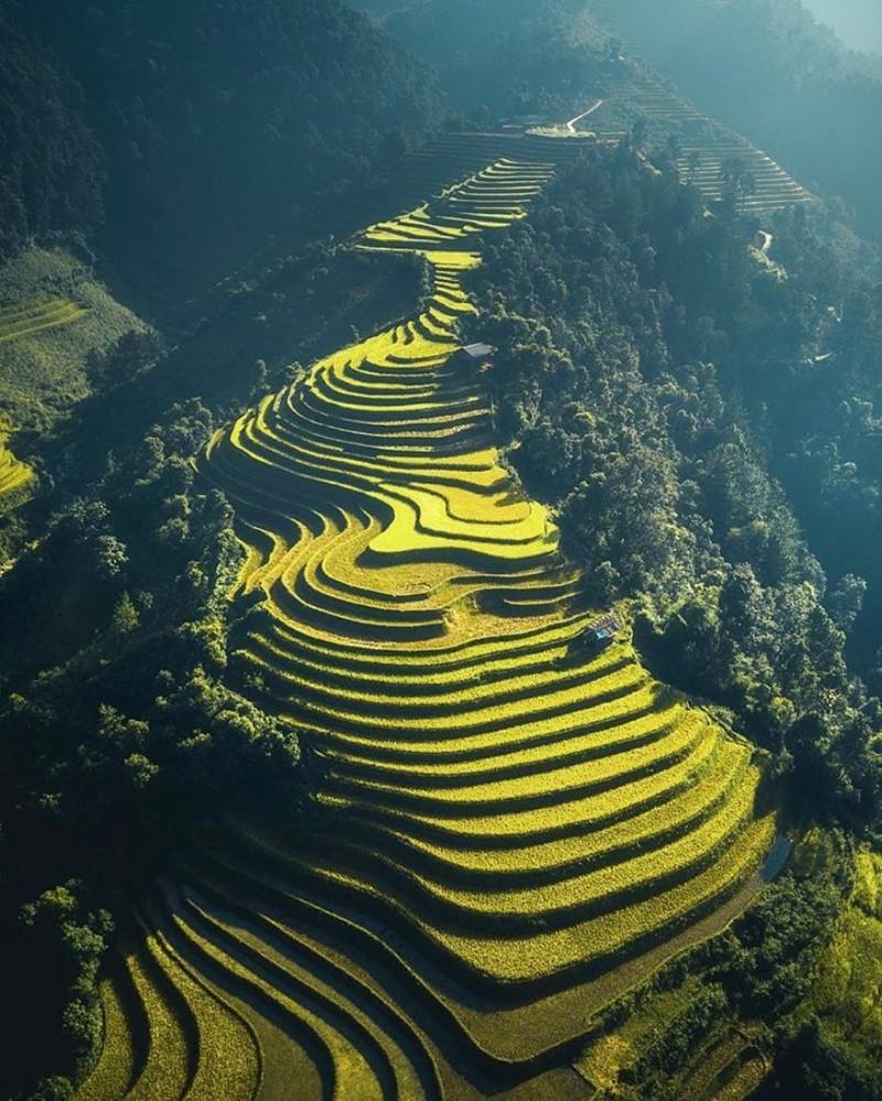 Sapa with its idyllic golden rice paddies