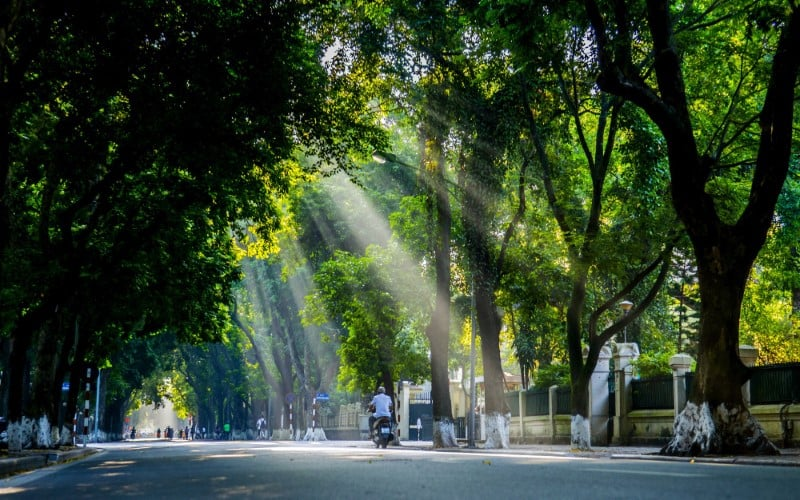 Summer sunlight falling on Phan Dinh Phung street