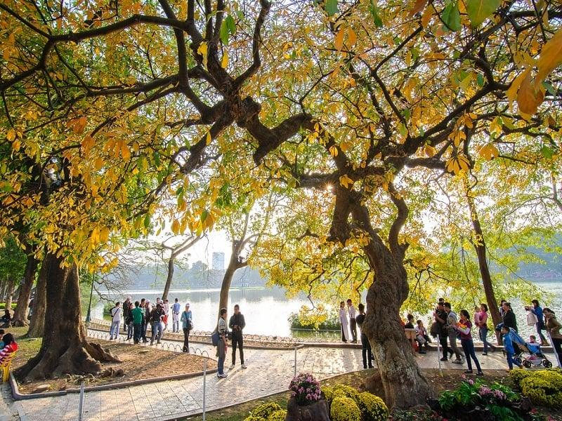 ancient hanoi autumn