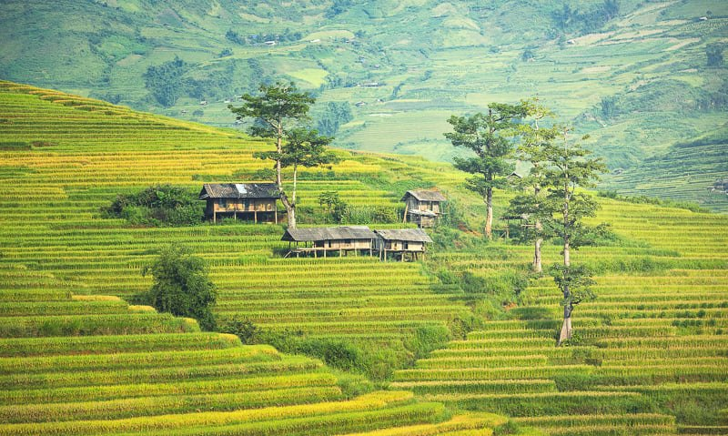 best time to visit sapa