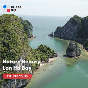 natural beauty of lan ha bay