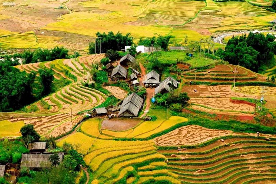 sapa terrace cat cat