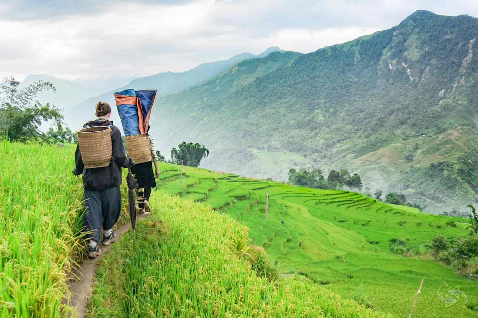 Day 4: Sapa trekking : Y Linh Ho - Lao Chai - Ta Van