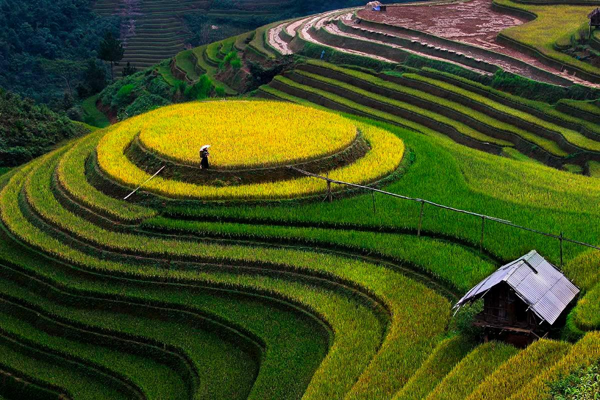mu cang chai VIETNAM IN SEPTEMBER